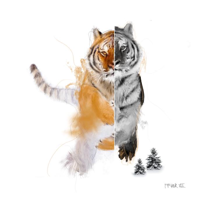 tigre, frank pineda